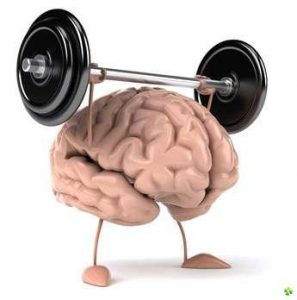 What is Muscle Memory?- NPTI Fitness